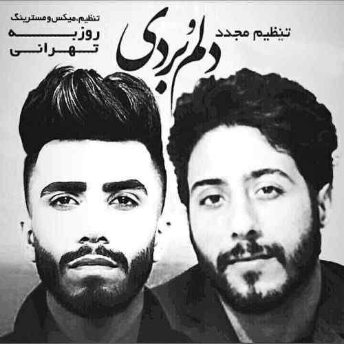 دانلود ریمیکس روزبه تهرانی دلمو بردی از مهراد جم